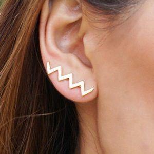 Price firm💕 14 Kt earrings